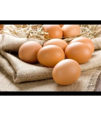 Volpe uova biologiche x 6