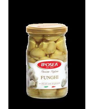 Iposea Funghi champignon